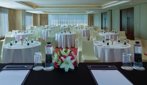 Mercure Hotel Hyderabad - Conference