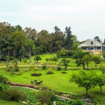 V Resorts Farm Stay Delhi: All about fruit orchards, bonsai and community building!