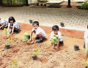STUDENTS TURN GREEN AMBASSADORS FOR WORLD ENVIRONMENT DAY
