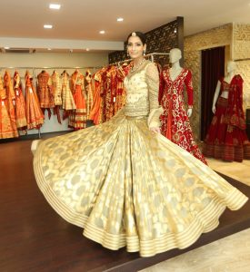 Model Krishna Somani