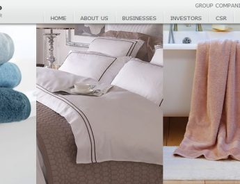 Welspun Group - Website - Image