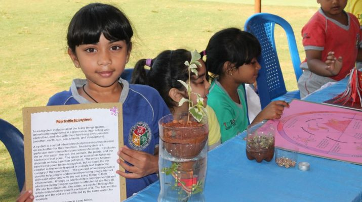 Trio students show their innovation at Science week 2