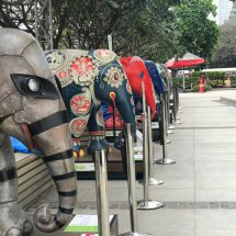 The Elephant Parade Comes to Oberoi Mall