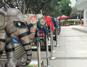 Elephant Parade at Oberoi Mall