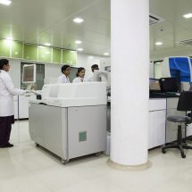iGeneticLab Test can Detect Dengue in the First 24Hours