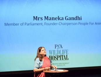 Mrs Maneka Gandhi - People for Animals
