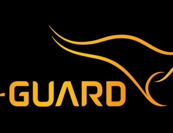 VGuard Industries Limited Logo