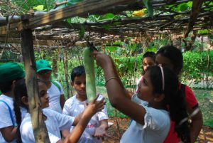 Fun-filled initiative teaches kids about sustainable agriculture on World Food Day 2