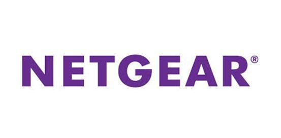 NETGear Inc Logo