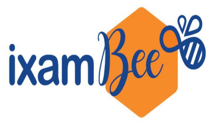 ixamBee Logo Large