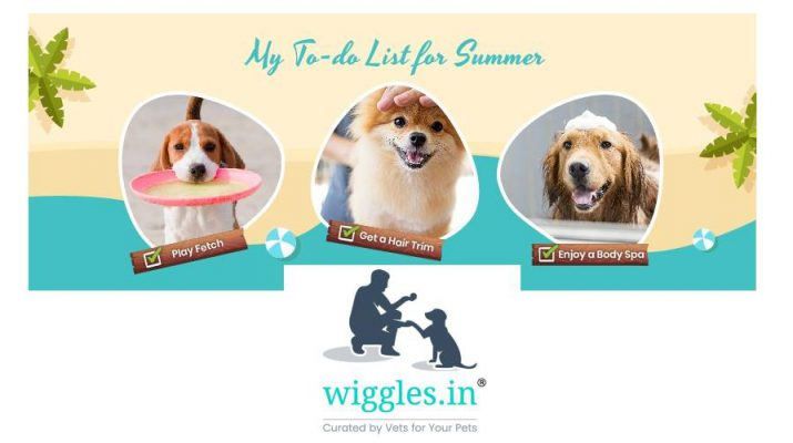 Wiggles India