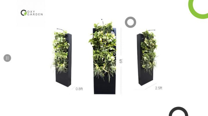 OxyGarden - Air Sanitizer