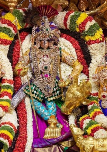 Thirupathi Brahmotsavam Perumal Photo