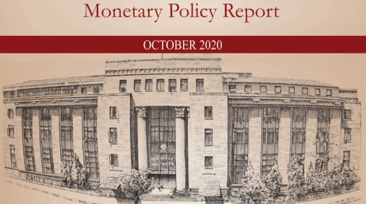 RBI Monetary Policy Report October 2020