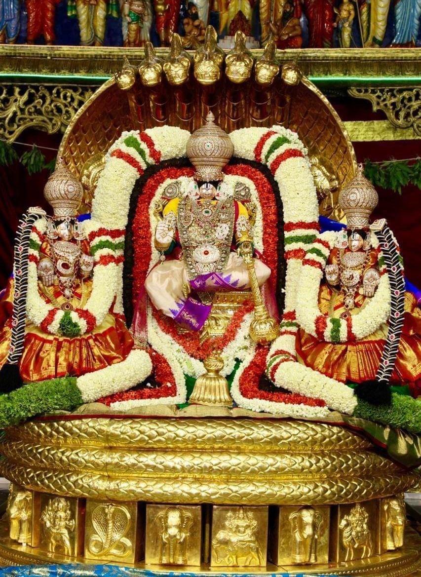 Thirumala Thirupathi Navratri Brahmotsavam 2020 - Sridevi Bhoodevi samedha Venkatachalapathy - 2